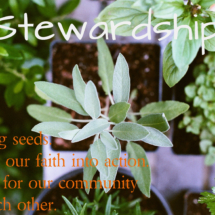 Stewardship - monthly focus mar 16
